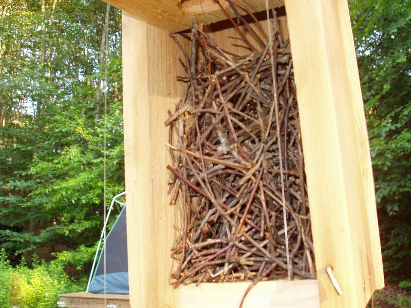 house wren sticks